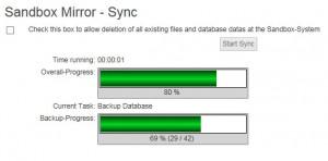 SandboxMirror_Sync